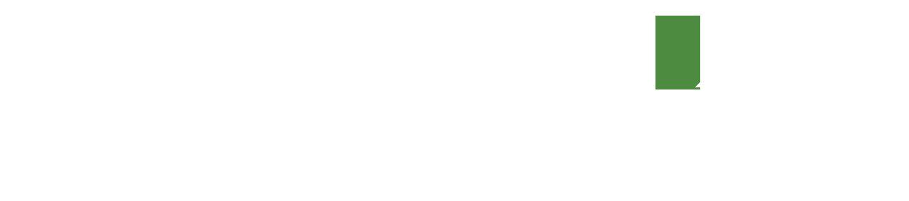SaaraLife